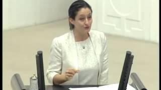 Şafak Pavey'in Mecliste 'Türban' konuşması 31 Ekim 2013