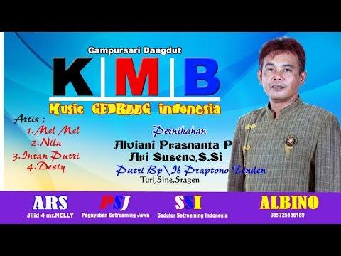 Live KMB music Gedrug// ALBINO Vishoot // ARS jilid 4 mr.Nelly