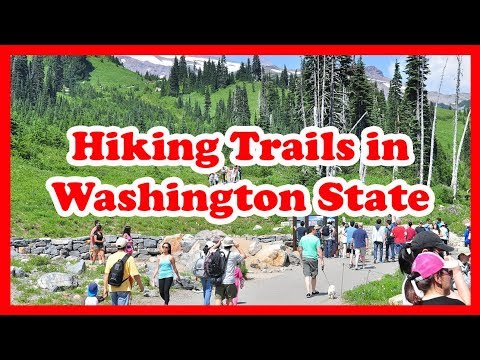 5 Top-Rated Hiking Trails in Washington State | US Hikes Guide
