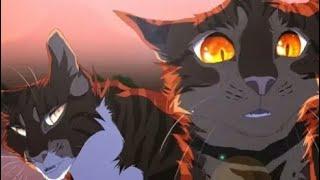 Коты-воители/Грозовое племя / миру мир.(Заказ с канала Тьма кв).