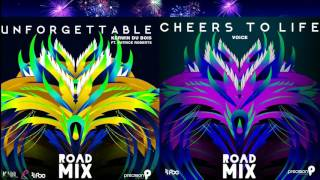 Unforgettable & Cheers To Life (Precision Productions Road Mixes)