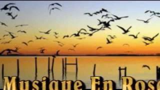 حسين الجسمي - عمرك سمعت بطير.wmv
