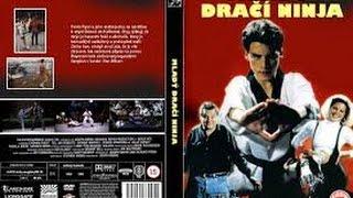 Harika Cocuk   Magic Kid 1993 DVDRip Türkçe Dublaj