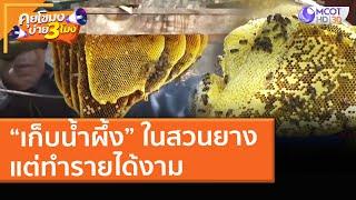"""""""เก็บน้ำผึ้ง"""" ในสวนยางเป็นอาชีพเสริม แต่ทำรายได้งาม! (16 เม.ย. 64) คุยโขมงบ่าย 3 โมง"""