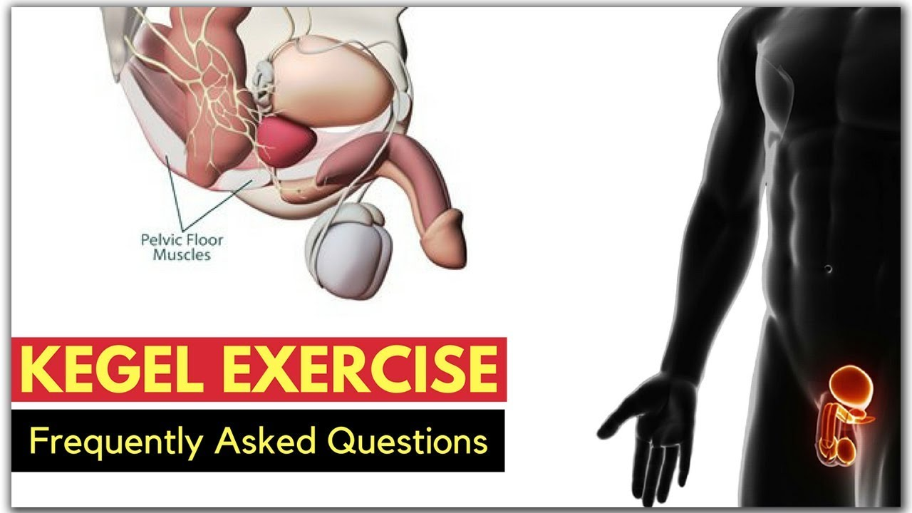 Kegel Exercise FAQs  1 Secret For Preventing Erectile