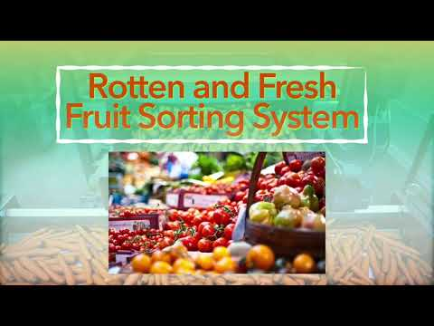 Fresh and Rotten Fruit Sorting System