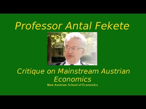 Part 28 - Antal Fekete - Marginal Time Preference and Marginal Productivity of Capital I