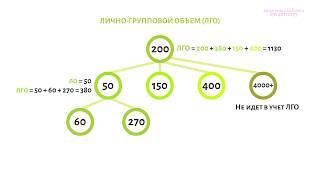 Базовые понятия | Greenway - обучение маркетинг плану (Часть 1/4)