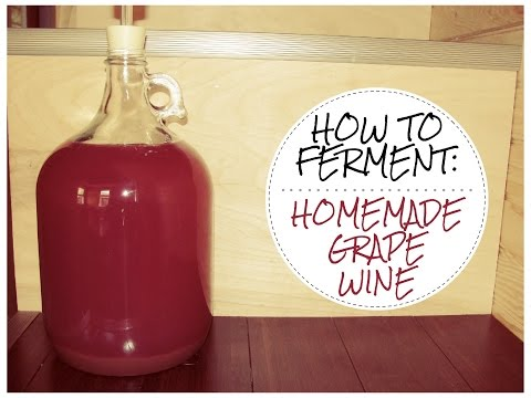 How to make WILD FERMENTED Homemade Grape Wine