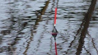 Клюёт на каждом забросе! Рыбалка 2020 весной