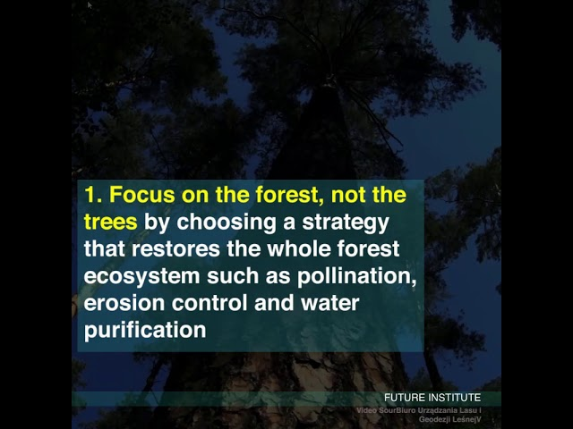 Planting trees will be a tool for fighting climate change if we do it properly
