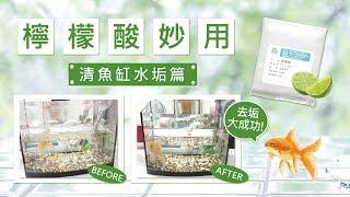 【檸檬酸妙用】清魚缸水垢篇