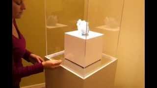 Down Lighted Showcase Pedestal