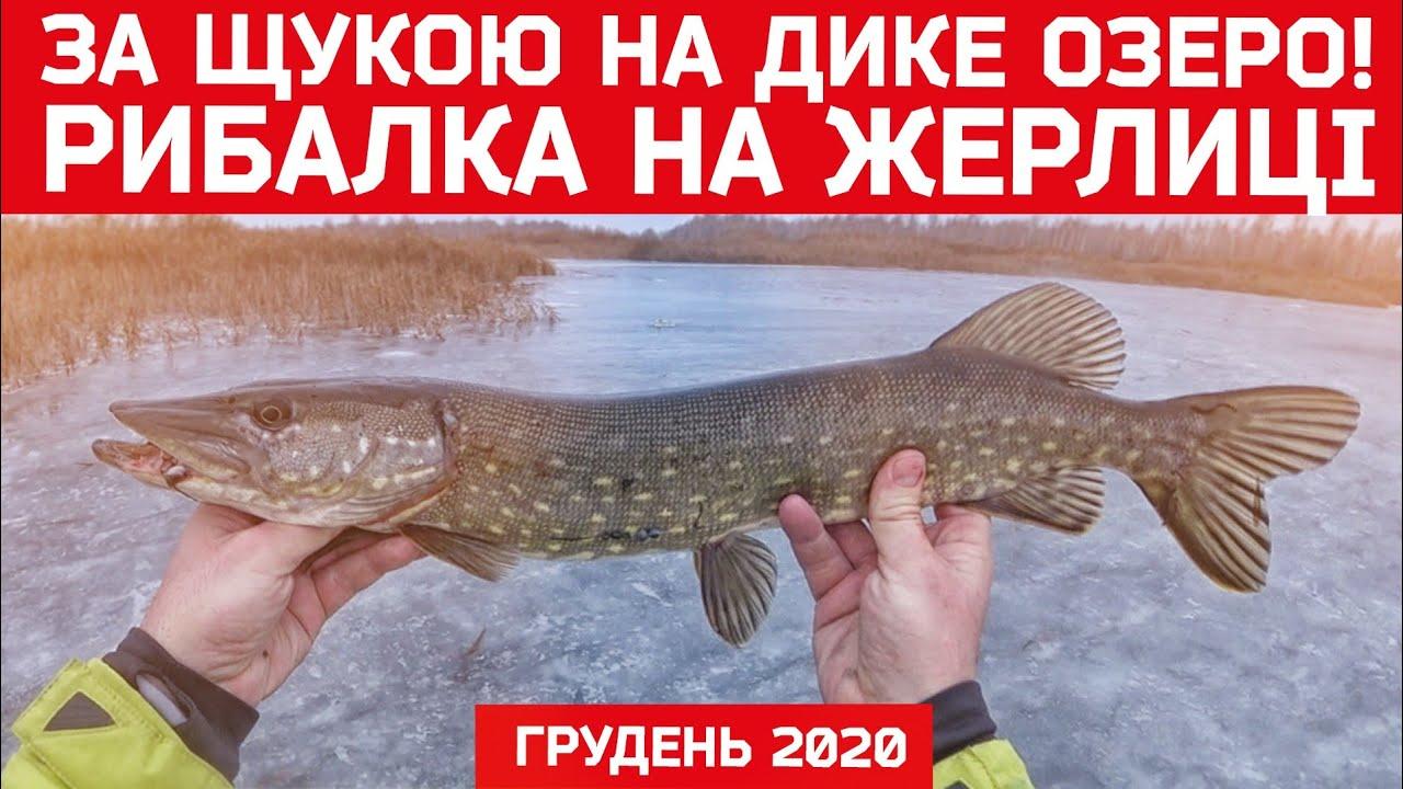 Рибалка на жерлиці взимку 2020