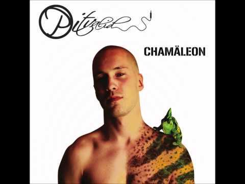 06 - Pitvalid - Chamäleon - Jetzt und hier