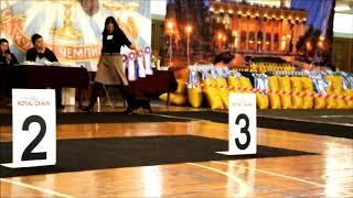 22.04.18, монопородная выставка. Выбор Лучшего Кобеля д.ш.