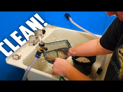 Quick Tip Tuesday: How to wash Gravel/Substrate/Crushed Coral quickly and easily.