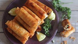 Cigares / bourek au poulet et légumes /  لفائف أو بوراك الدجاج و الخضر