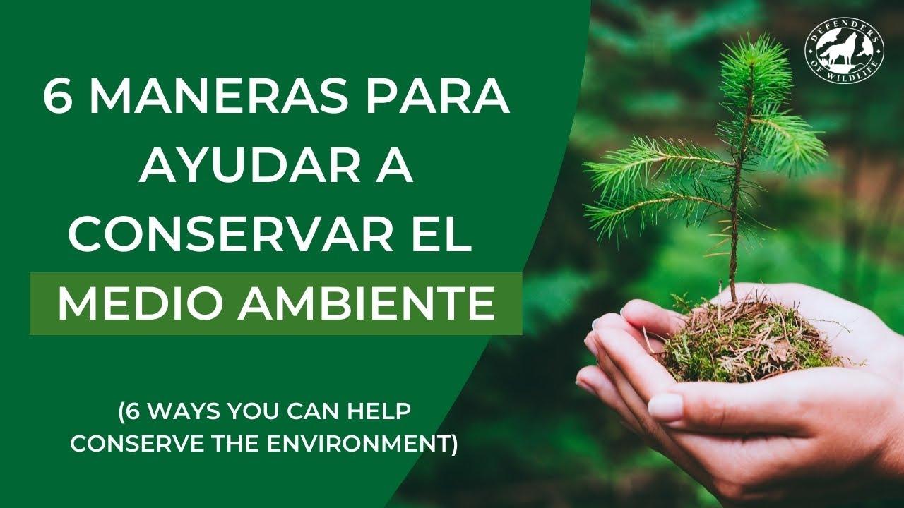 6 Maneras Para Ayudar a Conservar el Medio Ambiente (6 Ways You Can Help Conserve the Environment)