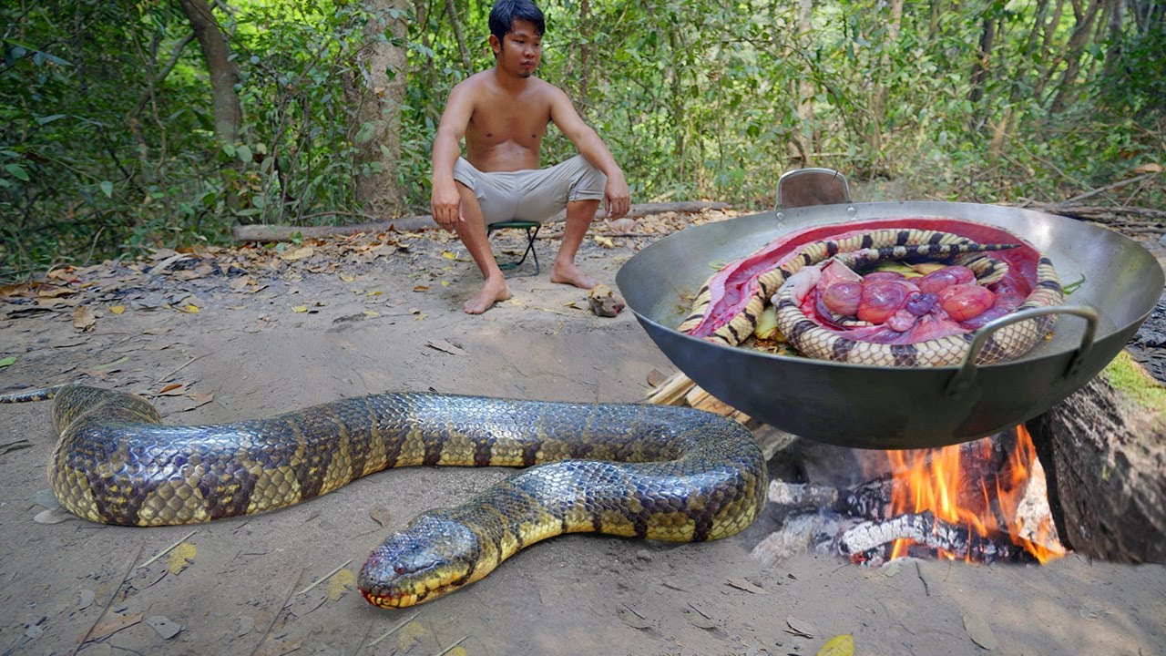 Download Amazing Catch Big Snake by Hand n Cooking to Survival in Forest