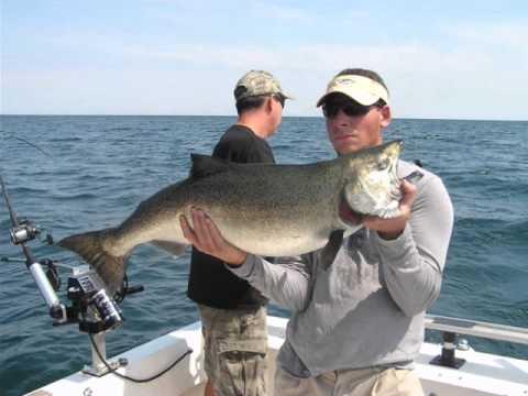 Hot Pursuit Sportfishing; 2011 Season Catches