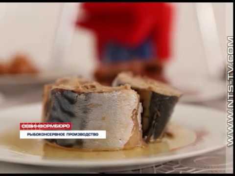 НТС Севастополь: 25.09.2017 Севастопольский рыбоконсервный комбинат «Аквамарин» начал новый сезон производства