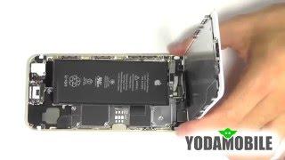 видео Замена стекла iPhone 6