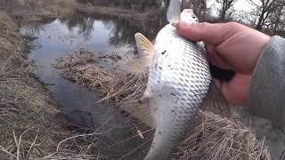 Рыбалка на удочку !!!! Ловля тарани, плотвы, воблы .
