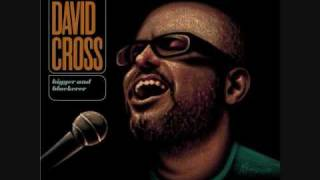 David Cross - The Most Surreal Thing I
