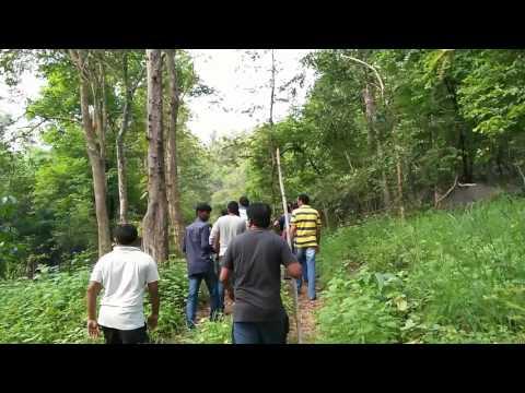 Safari trip at adilabad