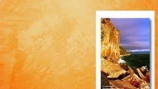ВЕНЕЦИАНСКАЯ фреска Мастер классы ДЕКОРАТИВНАЯ штукатурка БОГЕМСКАЯ METALLIC PLASTER Урок 1
