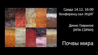 Денис Гаврилов «Почвы мира»