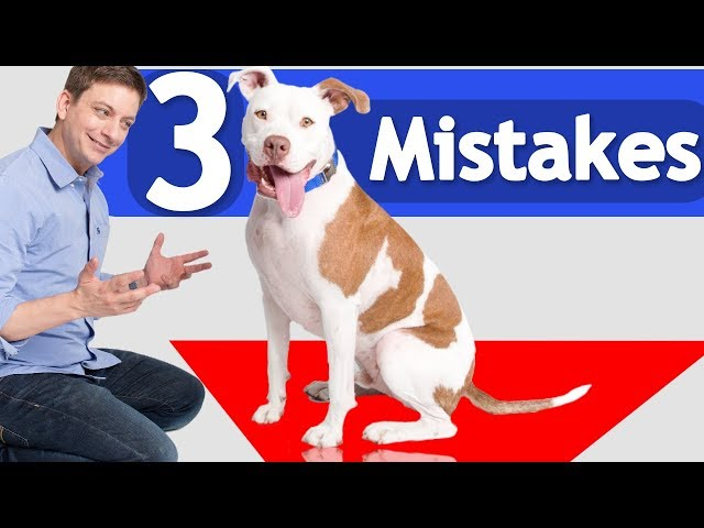 3 Mistakes you Might be Making when...