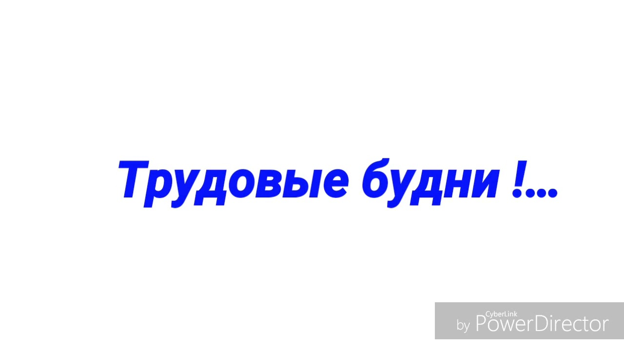 Трудовые будни картинки, освобождению сталинграда