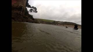 A swim in the River Avon at Bantham January 2014