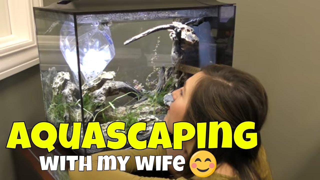 My Fish Aquascape in the New Fluval Spec 16 gallon - YouTube