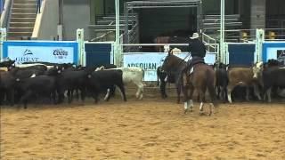 Billy Emerson 2011 AQHA Select Cutting World Champion