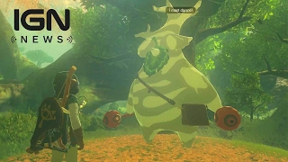 zelda breath of the wild what happens when you find all 900 korok seeds ign news