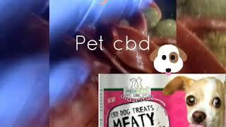 Cbd dog treats Commercial