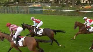 Vidéo de la course PMU PRIX DES PLATANES
