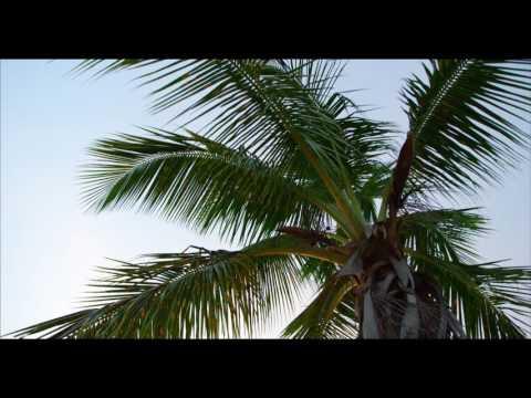 ST  JOHN   U S  VIRGIN ISLANDS in 4K Ultra HD