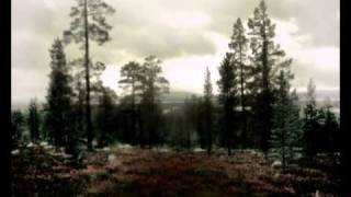 Scarcross - Freidenker Trailer.wmv