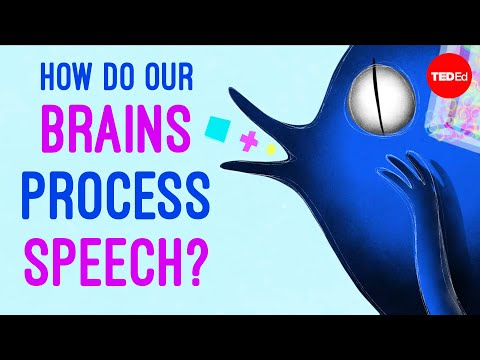 Video image: How do our brains process speech? - Gareth Gaskell