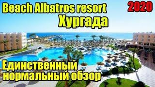 Полный обзор отеля Beach Albatros resort Hurghada Бич Альбатрос Хургада 2020