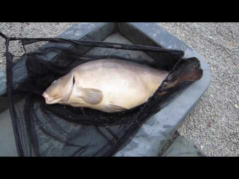 Catching A 45lb Carp At Etang Meunier Lake