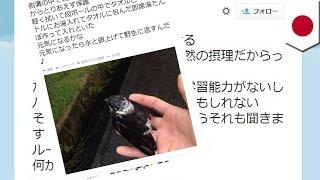 アイドルグループ「KAT-TUN」の元メンバー、田中聖さん(28)が弱った小...