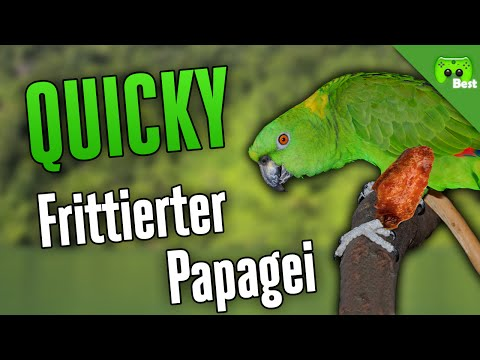 FRITTIERTER PAPAGEI 🎮 Quicky #172 | Best of PietSmiet
