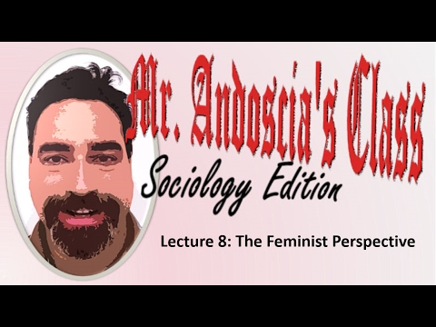 Lecture 8 The Feminist Perspective