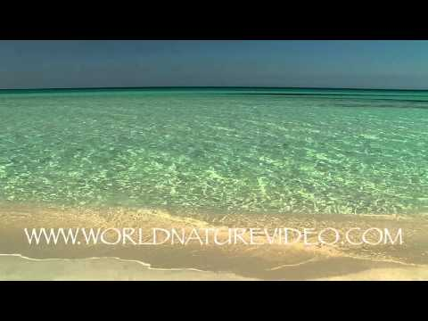 Summer Beach with ocean scenery, Nature Video Stock Footage_0208