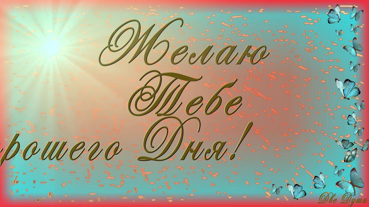 Пожелание, видео открытка пожелание хорошего дня